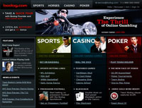 What is the best online sportsbook ?